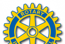 rotary wheel logo color