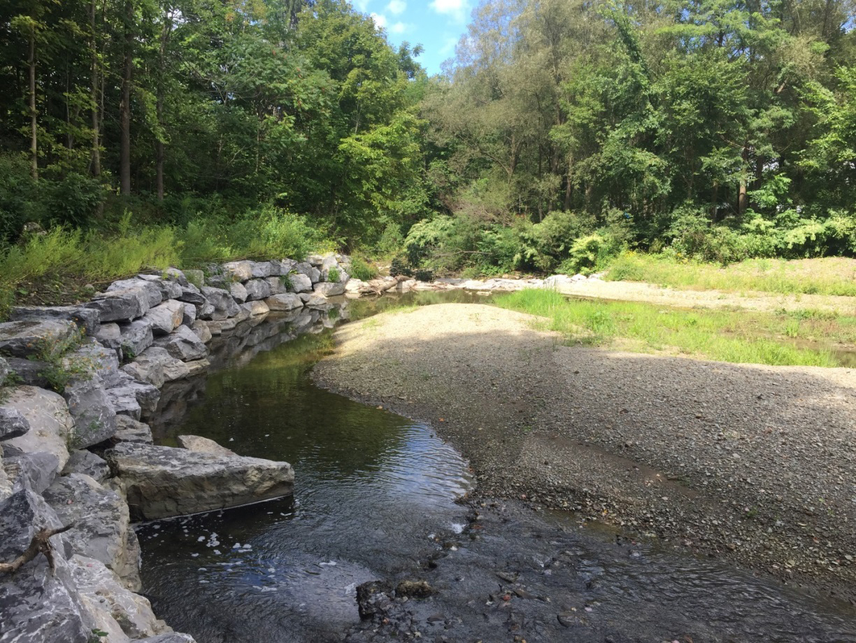 A successful streambank restoration project on Dewittville Creek that was co-funded by the 2% Occupancy Tax Grant Program for Lakes & Waterways.