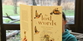 Along with illustrator Jackie Morris, author Robert Macfarlane created The Lost Words to bring back nature-related words that disappeared from the Oxford Junior Dictionary. As part of Doors Open Jamestown, on Saturday morning, January 18, Audubon Community Nature Center is presenting an introduction to this award-winning book and all-day free admission.