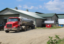 Cornell Cooperative Extension Specialists, Katelyn Walley-Stoll and Alycia Drwencke, address concerns over recent reports of milk dumping. There have been delays in getting milk from the farm to store shelves as milk plants catch up with shifts in demand.