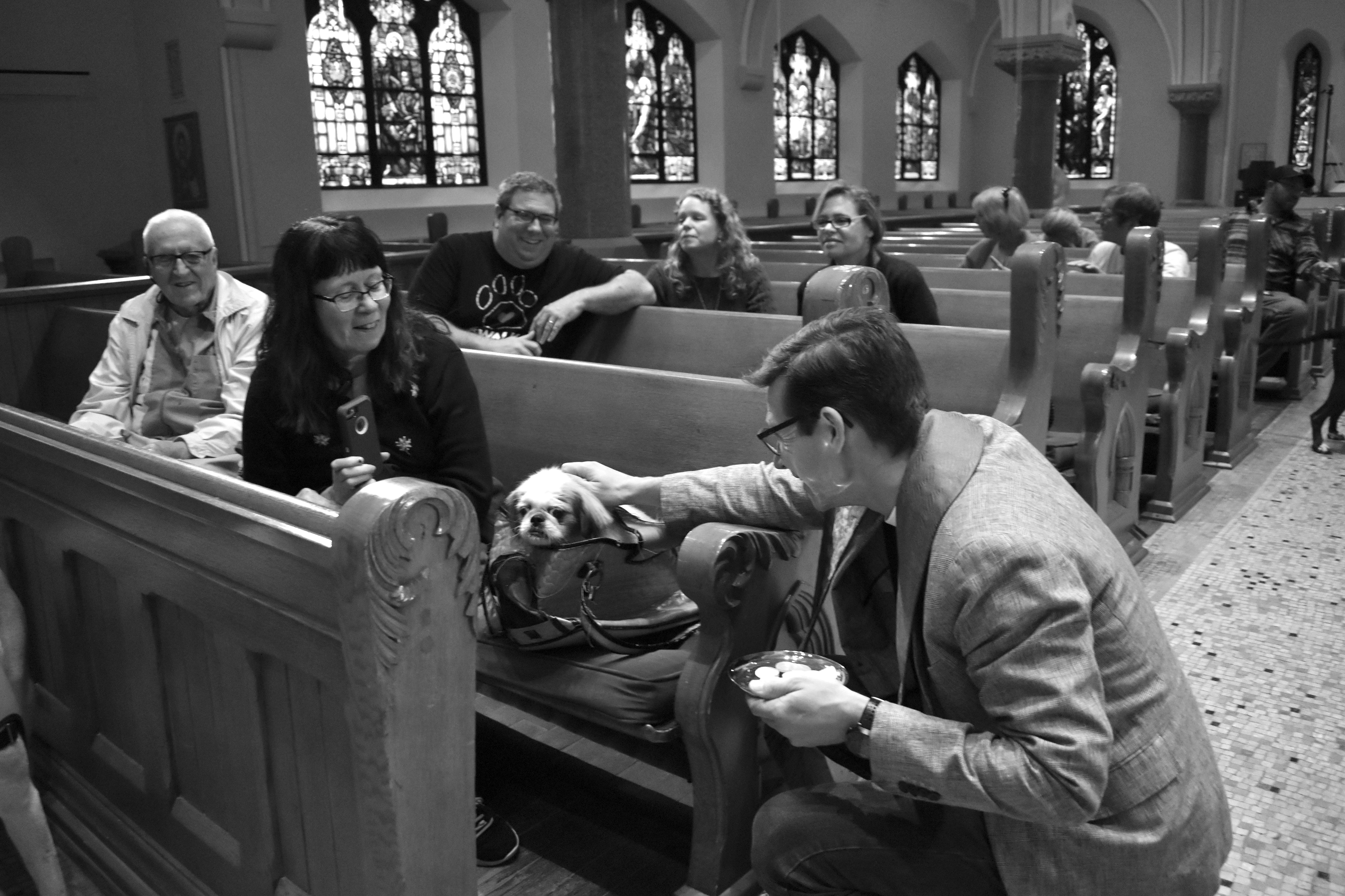 ALL—two, four or no-legged—are welcome St. Luke's Episcopal Church's Blessing of the Animals is""