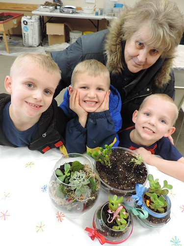 The entire family can participate in making terrariums to brighten up your home as winter approaches. Make reservations now for your choice of times on Wednesday, November 4, or Saturday, November 7, at Audubon Community Nature Center.