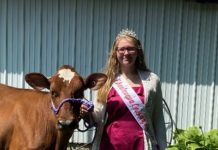 LynnDee Nagel, 2020-2021 Chautauqua County Dairy Princess with one of her dairy heifers she is raising that will soon produce milk on her family's dairy farm.