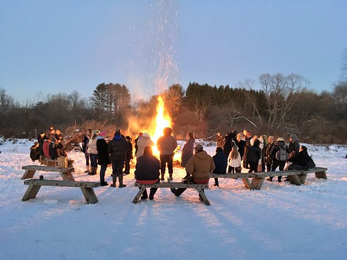 A Celebration Of Winter..